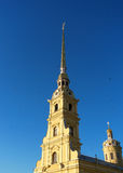 The Peter and Paul Cathedral. The spire of the Peter and Paul Cathedral and the crow Stock Photos