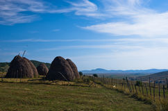 Pešter plateau panoramic landscape with haystacks and meadows Royalty Free Stock Photography