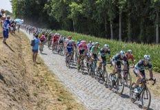 Peter Sagan i pelotonen - Tour de France 2018 Arkivfoton