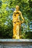 PETERGOF, РОССИЯ, МАЙ 2016: Дворец Peterhof и грандиозный каскад фонтанов Стоковое фото RF
