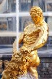 petergof фонтанов Стоковая Фотография