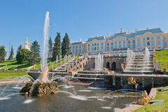 Petergof喷泉,圣彼德堡,俄国 免版税库存图片
