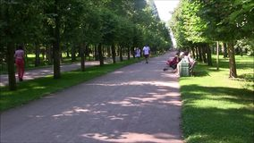 The Petergof fountain park, the park path. stock footage