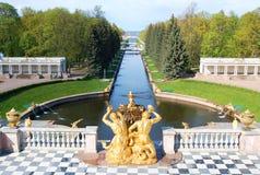 Petergof, gouden beeldhouwwerken van een fontein Stock Afbeeldingen