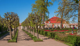 Petergof, Rusland - Juni 5, 2017: Chinese tuin in het complexe bad Het lagere park van het Peterhof-Paleis heilige Stock Afbeelding