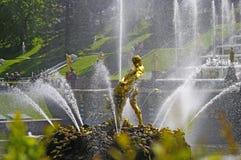 Petergof's fountain close-up Stock Images