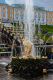 peterhof俄国 俄国国君的前住所 免版税图库摄影