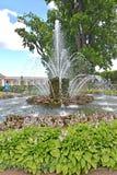 peterhof俄国 捆喷泉在Monplezirsky庭院里 图库摄影
