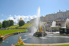 peterhof俄国 撕开狮子嘴喷泉和大小瀑布森山的看法 降低公园 库存照片