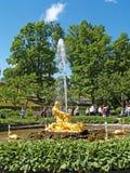 peterhof俄国 撕开嘴到一个海怪喷泉在Nizhny公园的氚核 免版税图库摄影