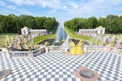 Peterhof宫殿和森山喷泉,圣彼得堡,俄罗斯盛大小瀑布  图库摄影