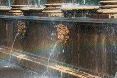 Peterhof宫殿圣彼德堡,俄罗斯 面具-一个喷泉的细节在Upperer庭院里 包括的Peterhof宫殿  免版税库存图片