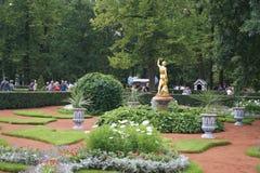 Peterhof庭院 免版税库存照片