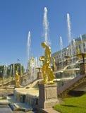 Peterhof,俄国 免版税库存照片
