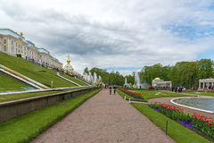 Peterhof,俄罗斯- 6月03 2017年 在大宫殿前面的大小瀑布喷泉 免版税图库摄影