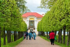 Peterhof,俄罗斯- 6月03 2017年 在亭子偏僻寺院和叶子胡同附近的游人降低公园 免版税库存图片