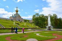 Peterhof,俄罗斯- 6月03 2017年 在巨大损失的大意大利喷泉 免版税库存图片