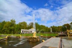 Peterhof,俄罗斯- 6月03 2017年 撕毁狮子的下颌的Samsons喷泉 库存图片