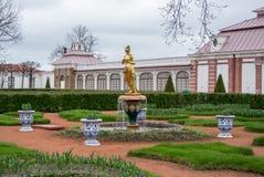 PETERHOF,俄罗斯- 2015年5月10日:一个金黄喷泉公园 图库摄影