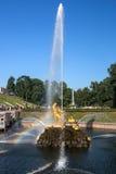 Peterhof,俄罗斯- 2012年8月05日:喷泉Samso 库存照片