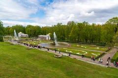 Peterhof,俄罗斯- 6月03 2017年 有喷泉的公园在宫殿前面 库存照片