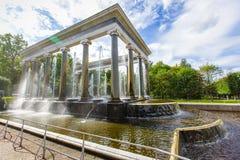 Peterhof,狮子小瀑布 免版税库存图片