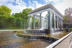 Peterhof,狮子小瀑布 免版税图库摄影