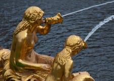 peterhof фонтанов Стоковое Фото