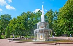 peterhof 俄国 在罗马喷泉附近的人们 库存照片