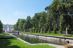 Peterhof. Grand Cascade Fountains At Peterhof Palace garden, St. Petersburg royalty free stock photography
