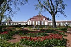 Peterhof royalty-vrije stock afbeelding