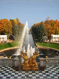 Peterhof Stock Image