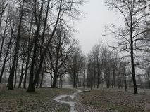 Peterhof Photos stock