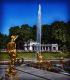 Peterhof Fotos de Stock
