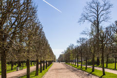 Peterhof Images stock