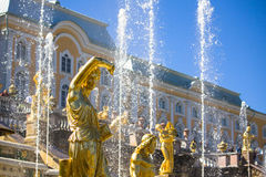 Peterhof Image stock