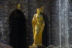 Peterhof Photographie stock libre de droits