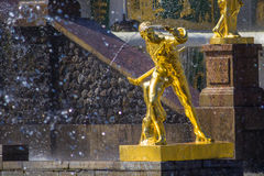 Peterhof Fotografia Stock Libera da Diritti