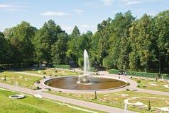 Peterhof. Baje el parque. Tazón de fuente de la fuente Fotos de archivo libres de regalías