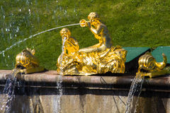 Peterhof Royalty Free Stock Photo