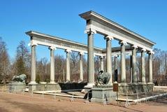 Peterhof. De cascade van de leeuw in de lente royalty-vrije stock afbeeldingen