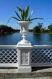Peterhof, dekoracyjna waza Obraz Royalty Free