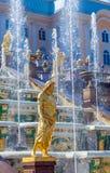 peterhof för slott för kaskadspringbrunnar storslagen Royaltyfri Fotografi