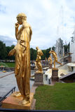Peterhof fa il giardinaggio fontane Fotografie Stock