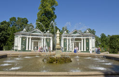Peterhof, fountain Stock Image