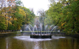The Peterhof fountains  Stock Photo
