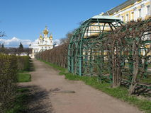 Peterhof, The Gгаnd Palace, Peterhof. Saint-Petersburg, Russia royalty free stock photo