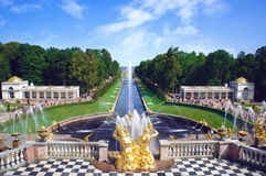 Peterhof. Grand Cascade Fountains At Peterhof Palace garden, St. Petersburg royalty free stock images