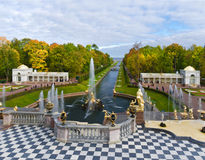 Peterhof Stock Images