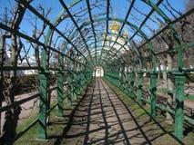 Peterhof, Hogere tuin Royalty-vrije Stock Afbeeldingen